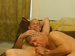 Queer david does a beggar