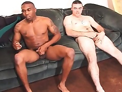 Two gorgeous studs construct on the couch and stroke their cocks