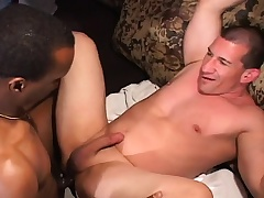 Muscled white man has a Negroid bloke sucking his rod plus banging his ass