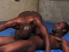Baneful gay wrestlers spry their sweet lips on each other's big rods